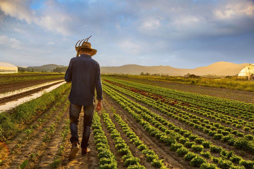 çiftçilik bitiyor