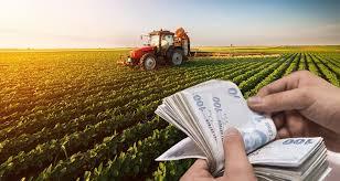 tarımsal destekleme ödemeleri
