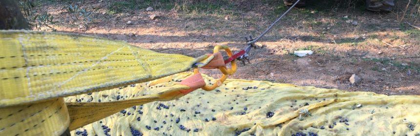 Meyve Silkeleme Hasat Makinesi