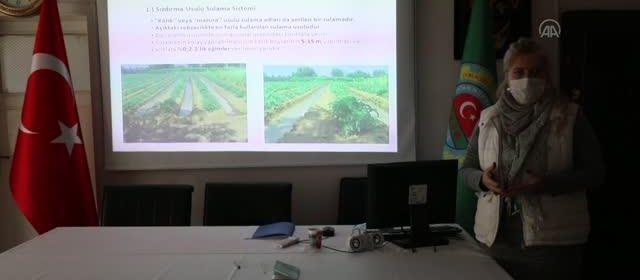 çubuk ziraat odası çiftçi eğitimleri