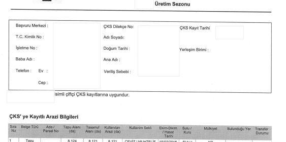 CKS Belgesi Ornegi 1